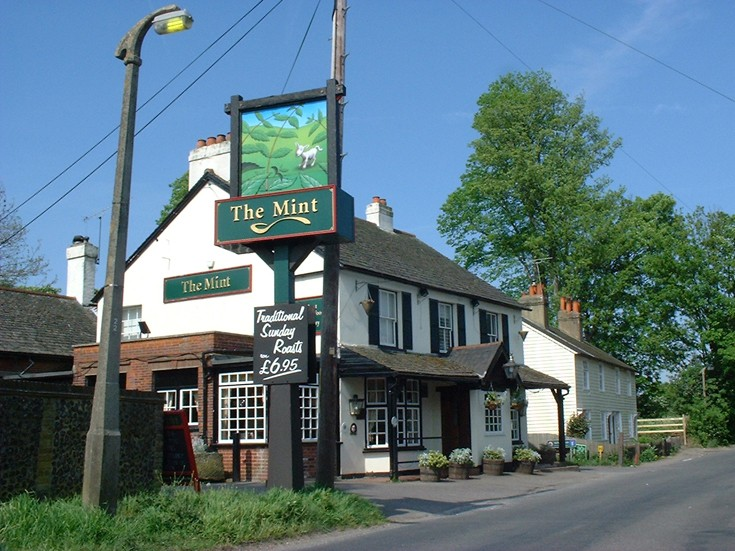 The Mint Public House in Park Road Banstead