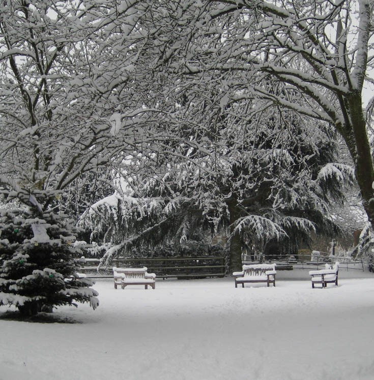 Snow in Banstead in Jan 2010 - The Church Orchard