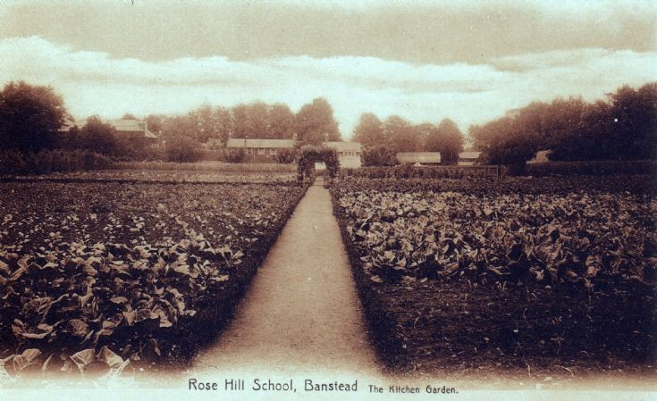 Rose Hill School, The Kitchen Garden