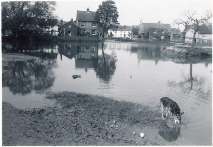 the lake Burgh Heath