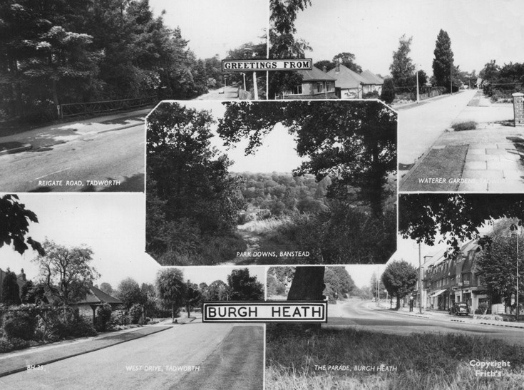 Tadworth and Burh Heath multi postcard