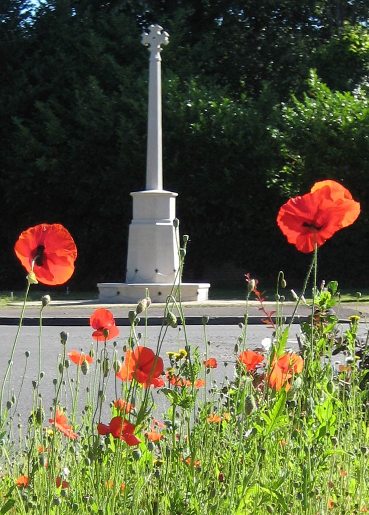 WW1 Centenary - Banstead War Memorial poppies