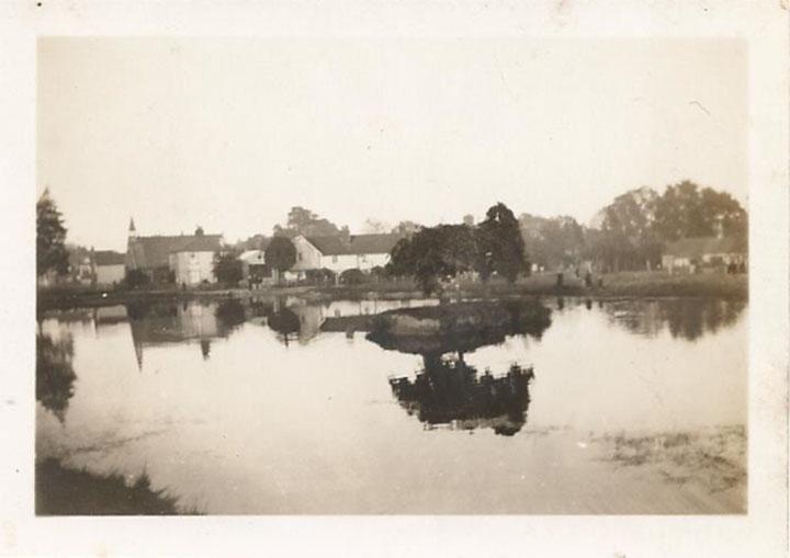 Burgh Heath pond