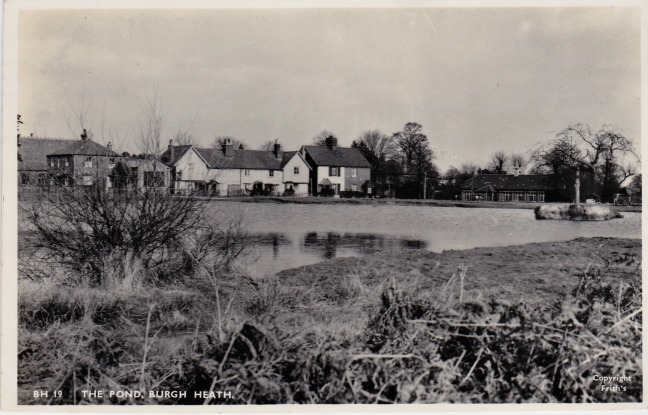 Burgh Heath - The Pond