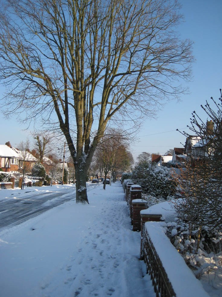 Fiddicroft Avenue Banstead  Snow Dec 2009