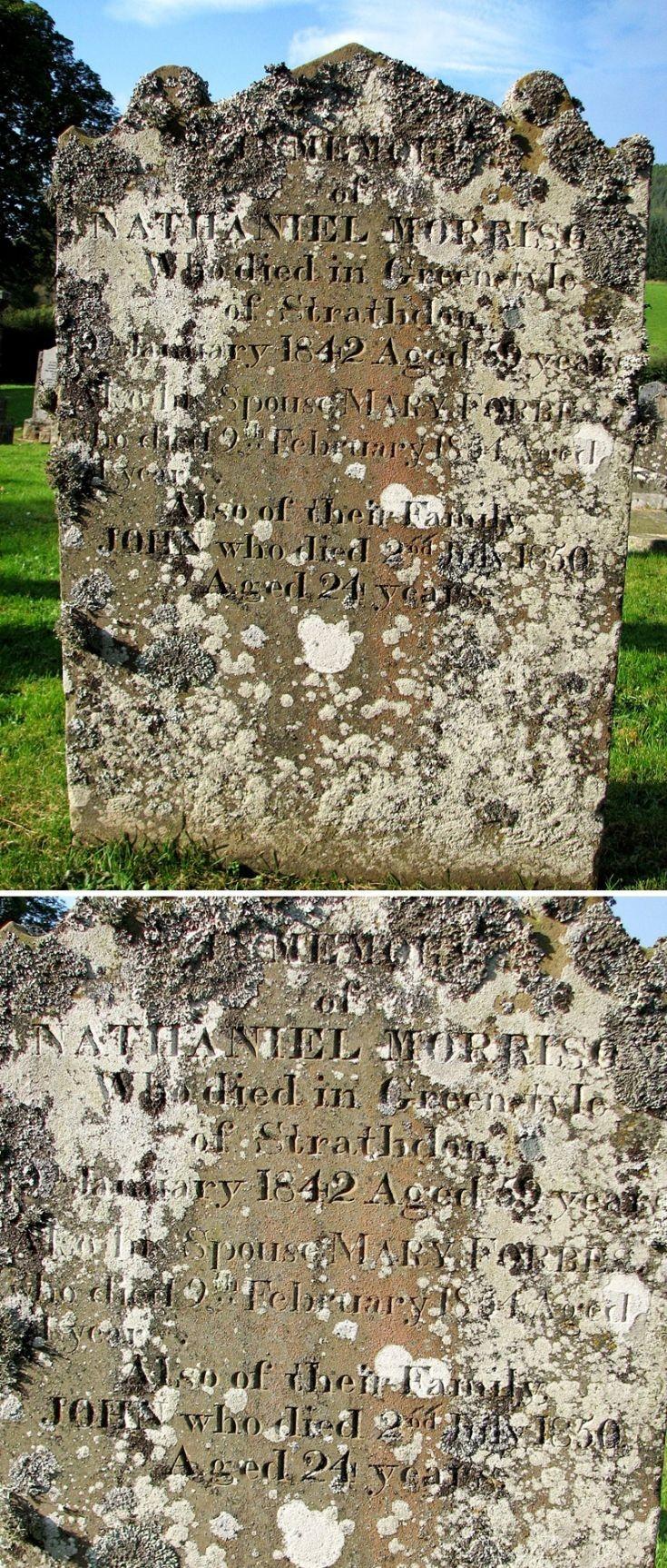 72 Grave No 98 Nathaniel Morrison
