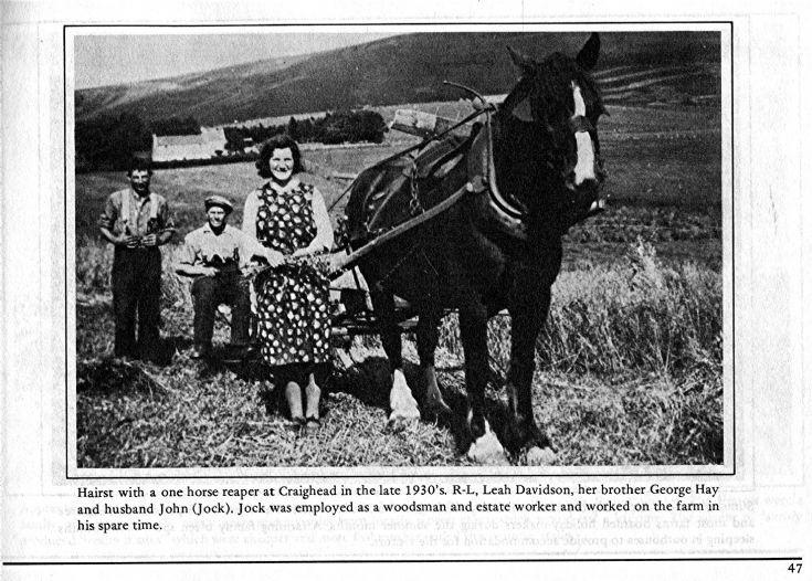 47 Hill Farming