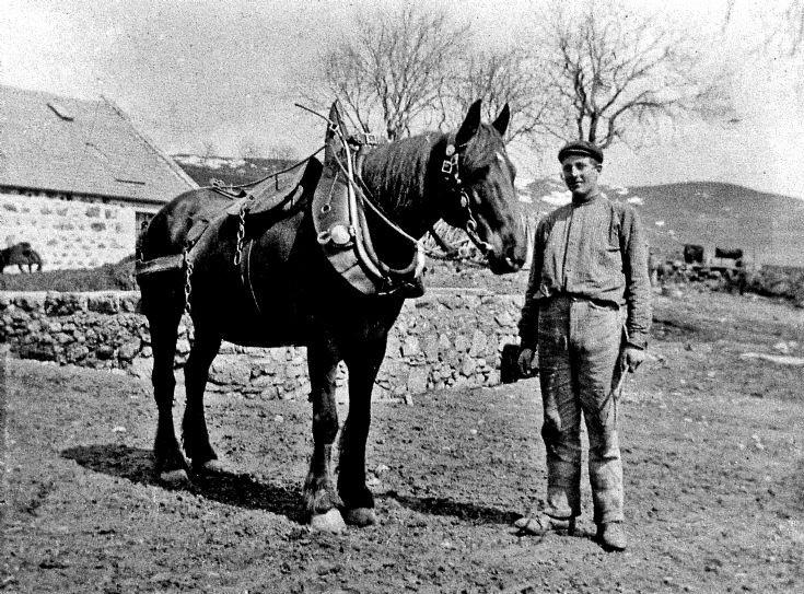 65 Man and horse at Baltimore Glenbuchat