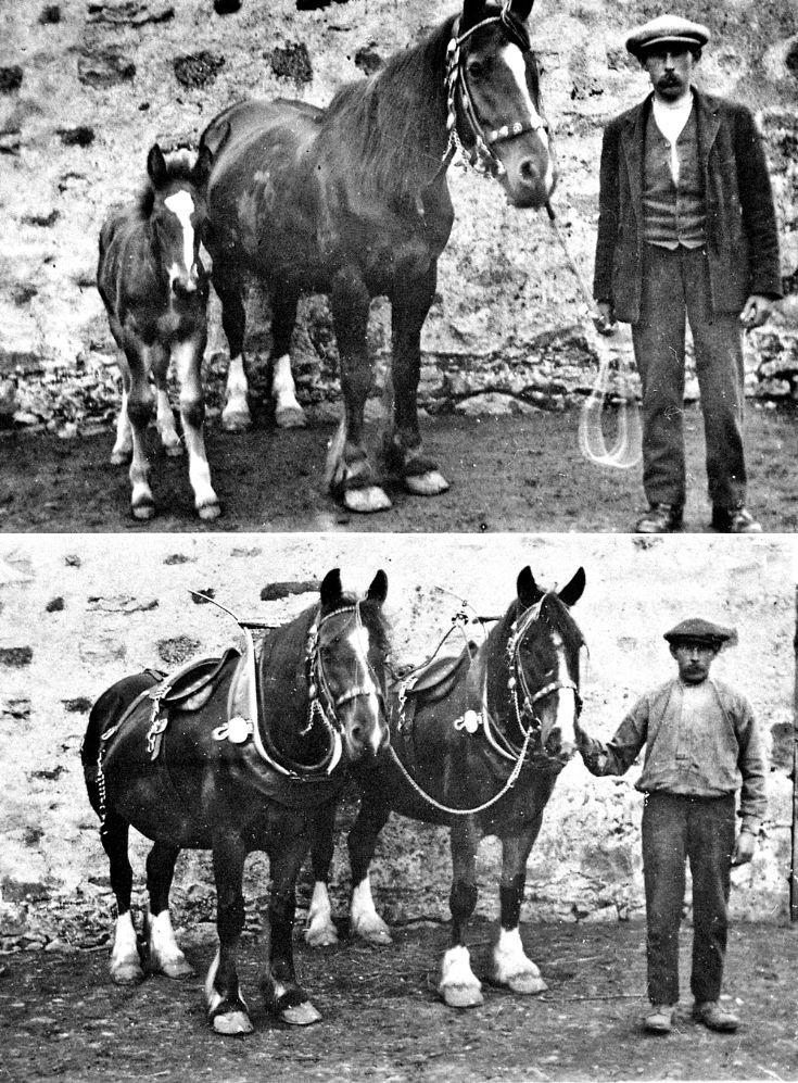 130 Horses and Horesmen at Glenbuchat