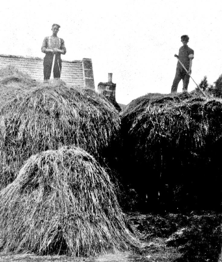 89 Building hay stacks, Glenbuchat.