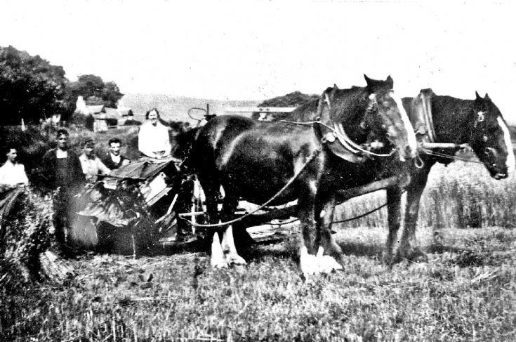 95 Harvest with Sunnybrae behind, Glenbuchat