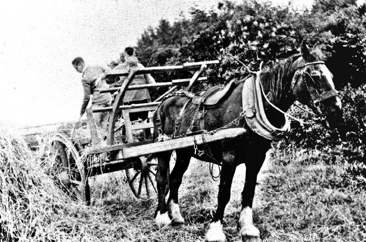 112 Hay cart at ?Craighead Glenbuchat