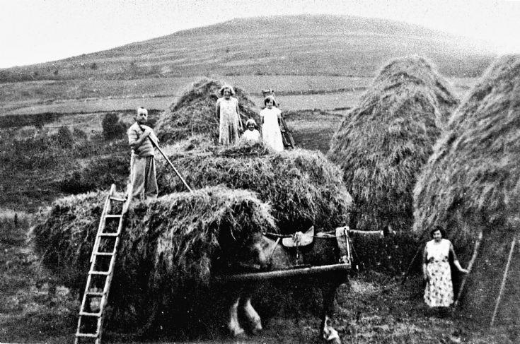 119 Haymaking Glenbuchat