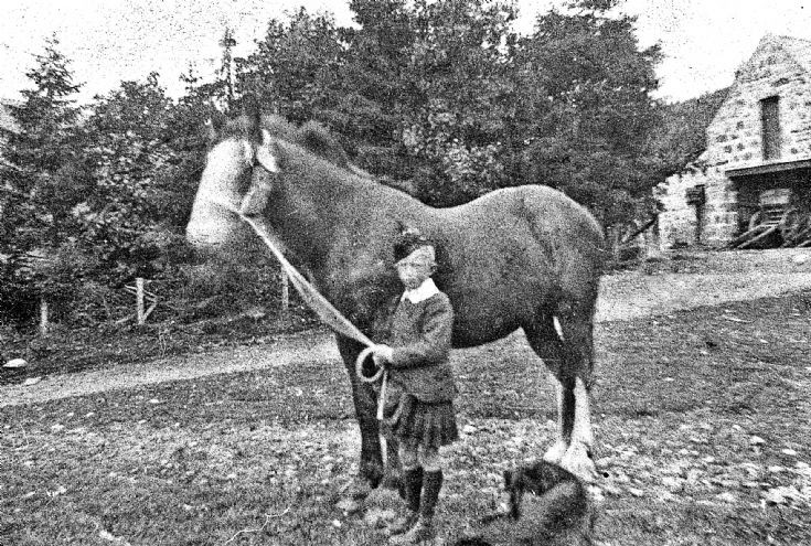 122  Boy with Horse Glenbuchat