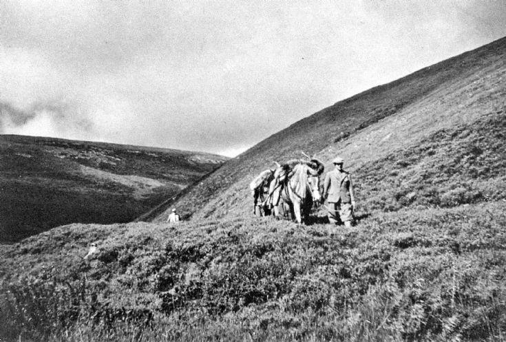 128 Stalking Glenbuchat