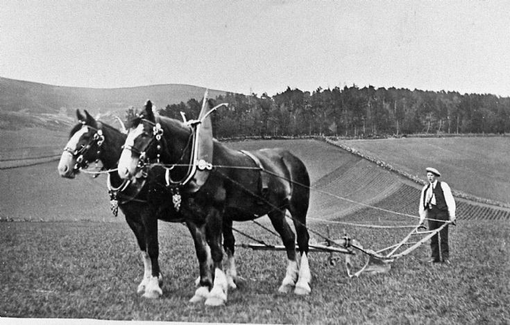 155 Ploughing Team Baltimore Farm Glenbuchat