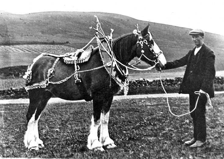 156 Horse and horseman Baltimore Farm Glenbuchat