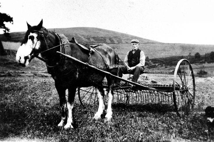 158 Mr Stewart Blackhillock, Glenbuchat