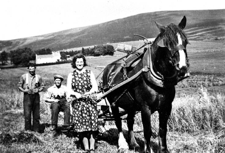 191 Jock Davidson, George Hay and  Leah Davidson.