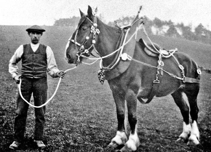 227 Mr Thomson Belnaglack Farm Glernbuchat