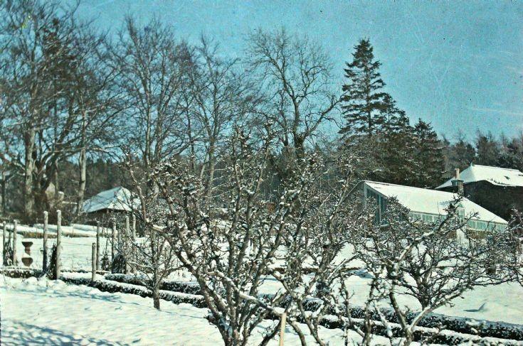 10 Castle Newe gardens in the snow c 1910