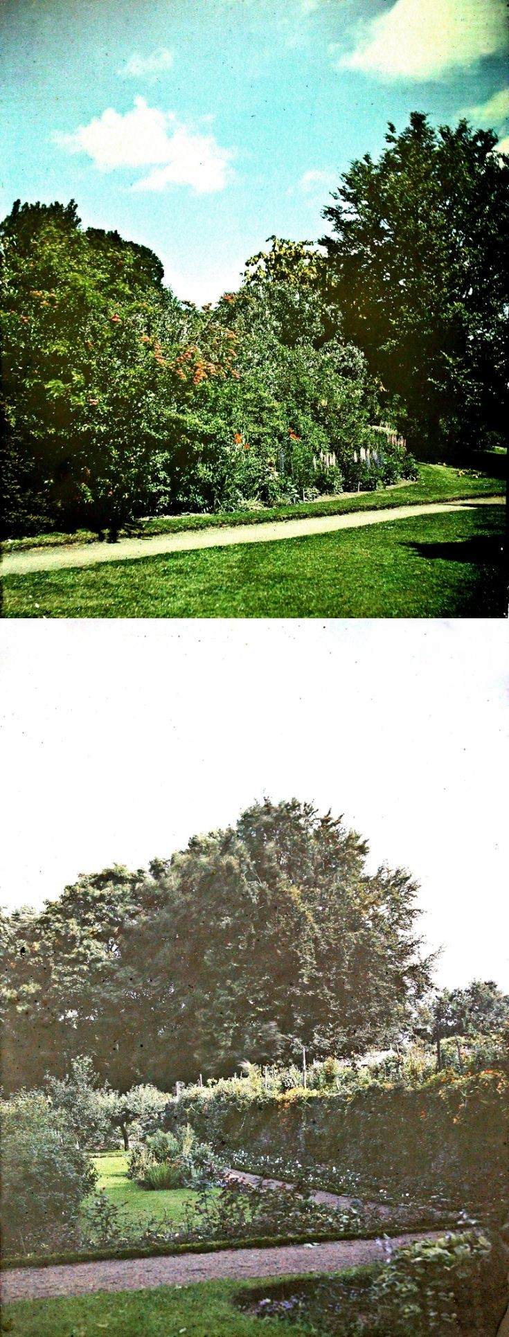 16 Castle Newe Garden c 1910