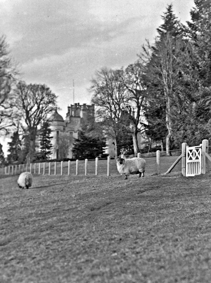 29 Castle Newe  c 1910