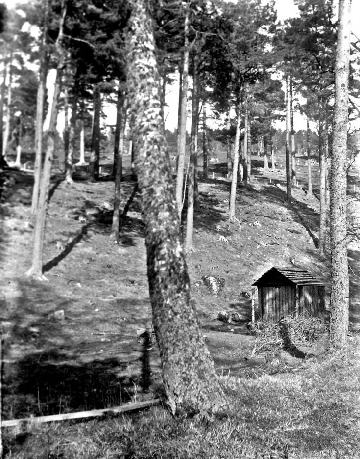 60 Children's Play Hut at Castle Newe c1910