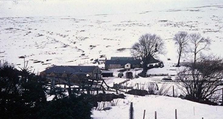 132 Netherton Winter