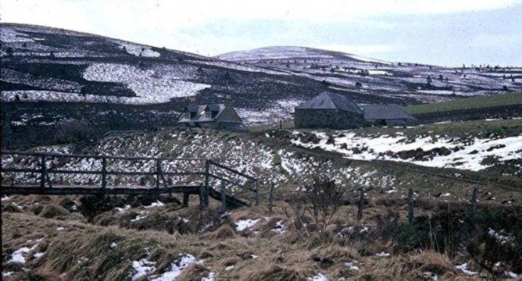 133 Crofts Winter