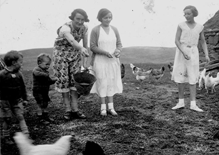 22 Feeding Hens