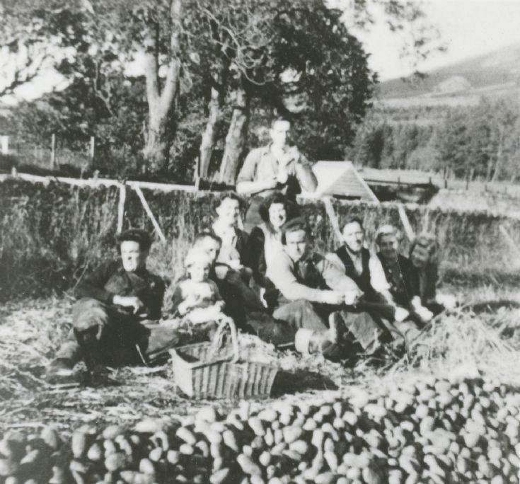 12 Picnic at Potato Harvest