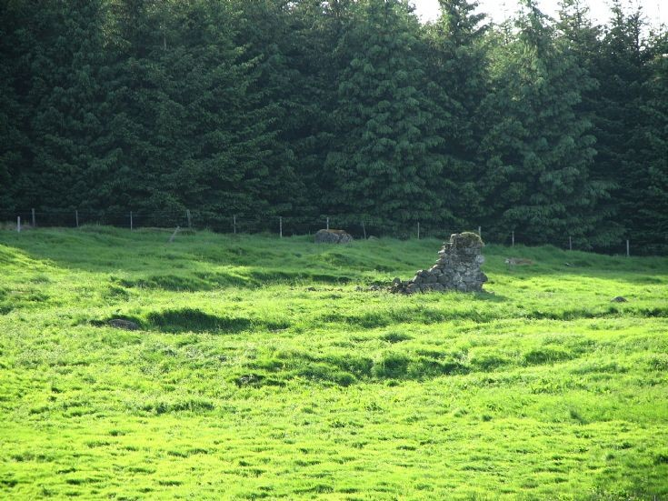 56 Tarntoul Croft Ruins