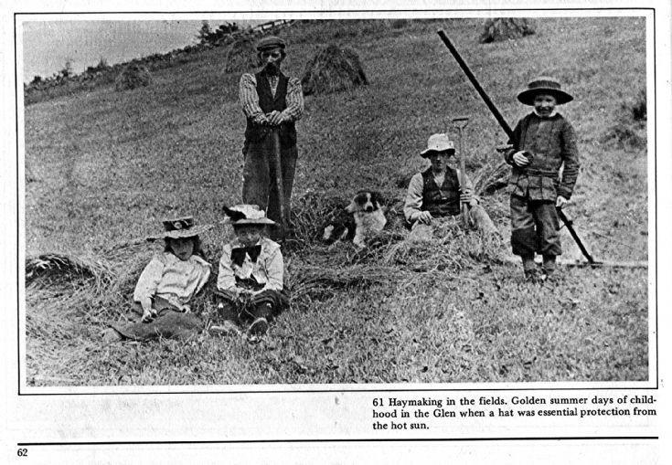 60 Haymaking