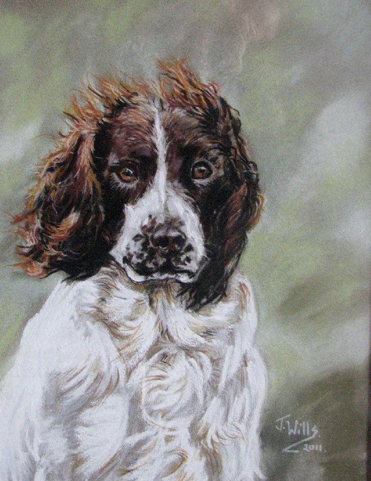 144 Jane Wills Animal Portraits Beltimb