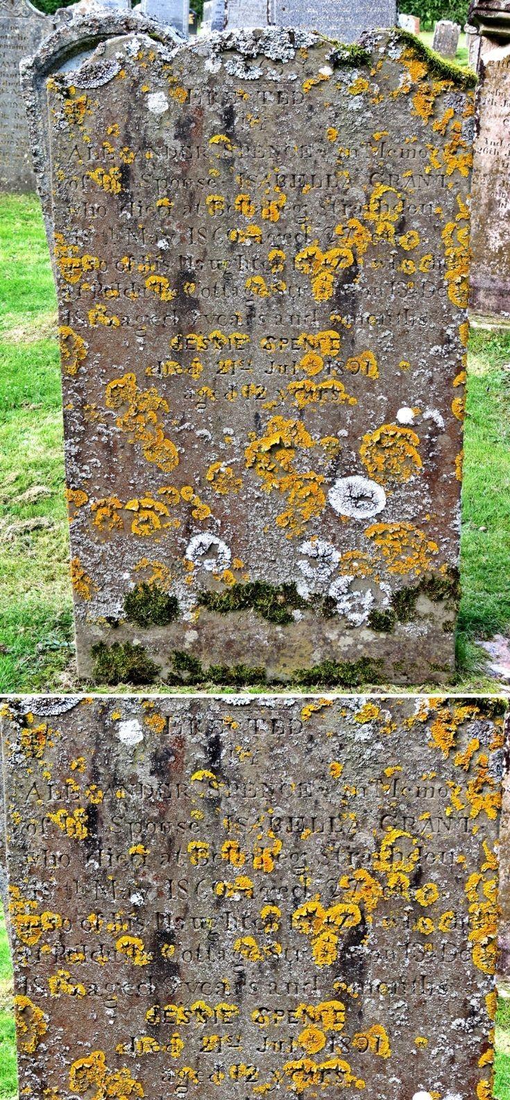 33 Grave Stone No 32 Isabella Grant