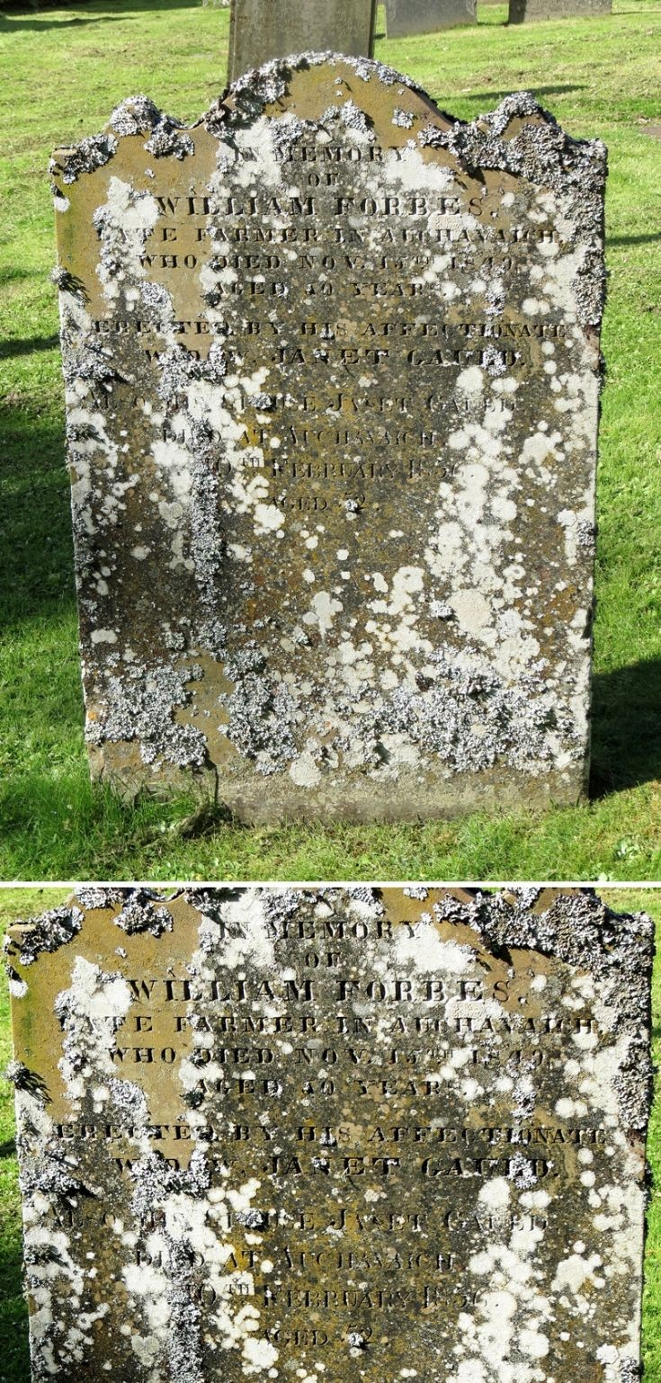 47 Grave No 53 William Forbes