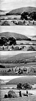 22 Strathdon Slides - Unidentified Farm Hay making