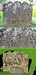 21 Grave Stone No 18 Robert Murdoch