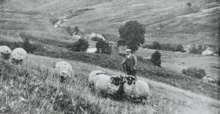 Achavaddy - 1950 ?