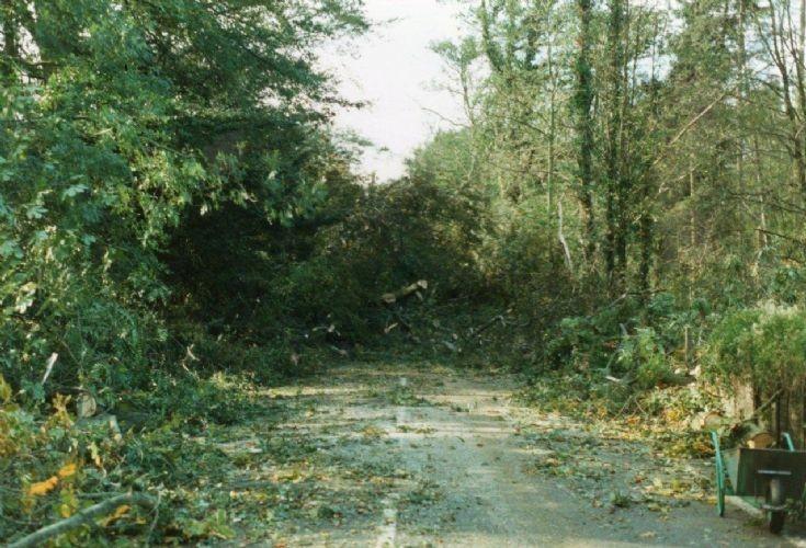 The Great Storm - Horsham Road, Handcross