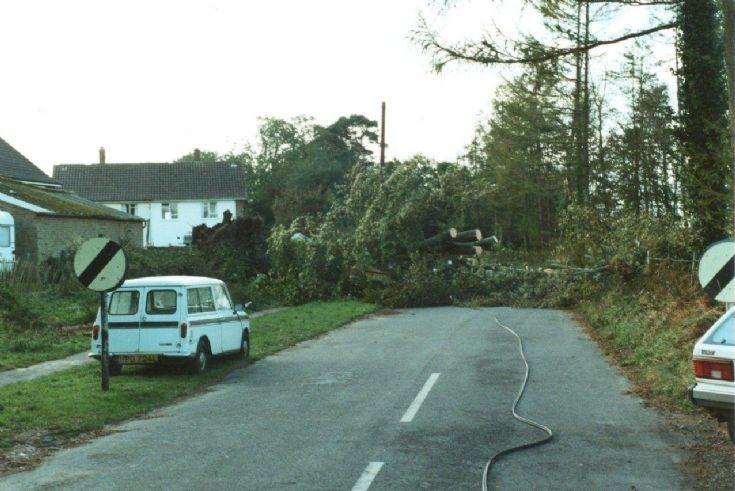 Great Storm - Coos Lane, Handcross
