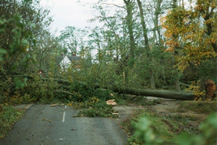 Great Storm - Balcombe Lane, Handcross