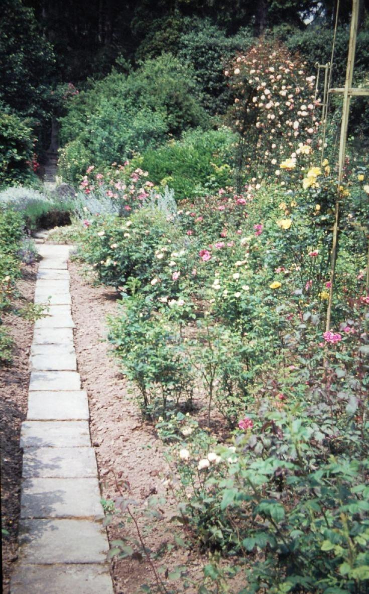 Nymans - Rose Garden renovation (1)