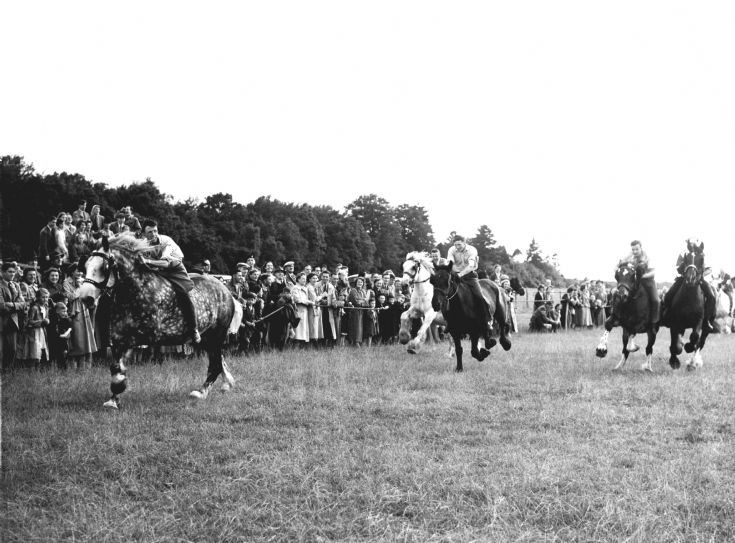 Carthorse Derby at Handcross 1952