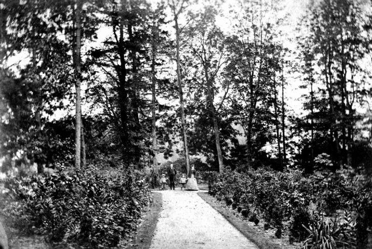 A walk at Tilgate Forest Lodge, Pease Pottage