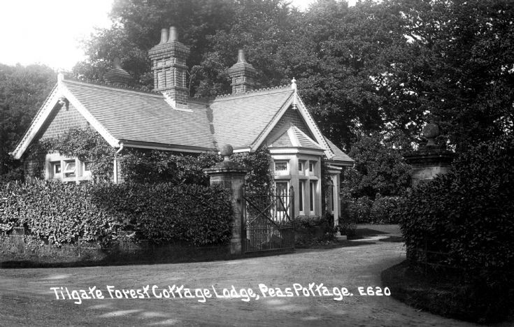 Tilgate Forest Cottage Lodge, Pease Pottage