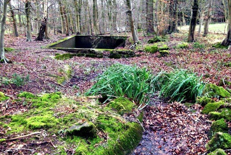 Woodhurst - The disappearing rock garden (1 of 2)