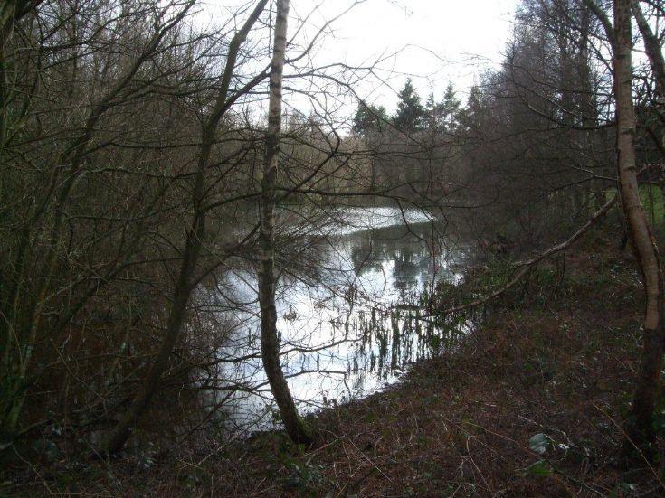 Woodhurst - The Fish Pond