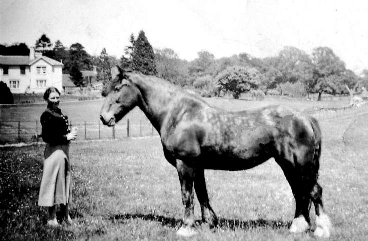 Slaugham Park - Miss Hilary Preston and horse